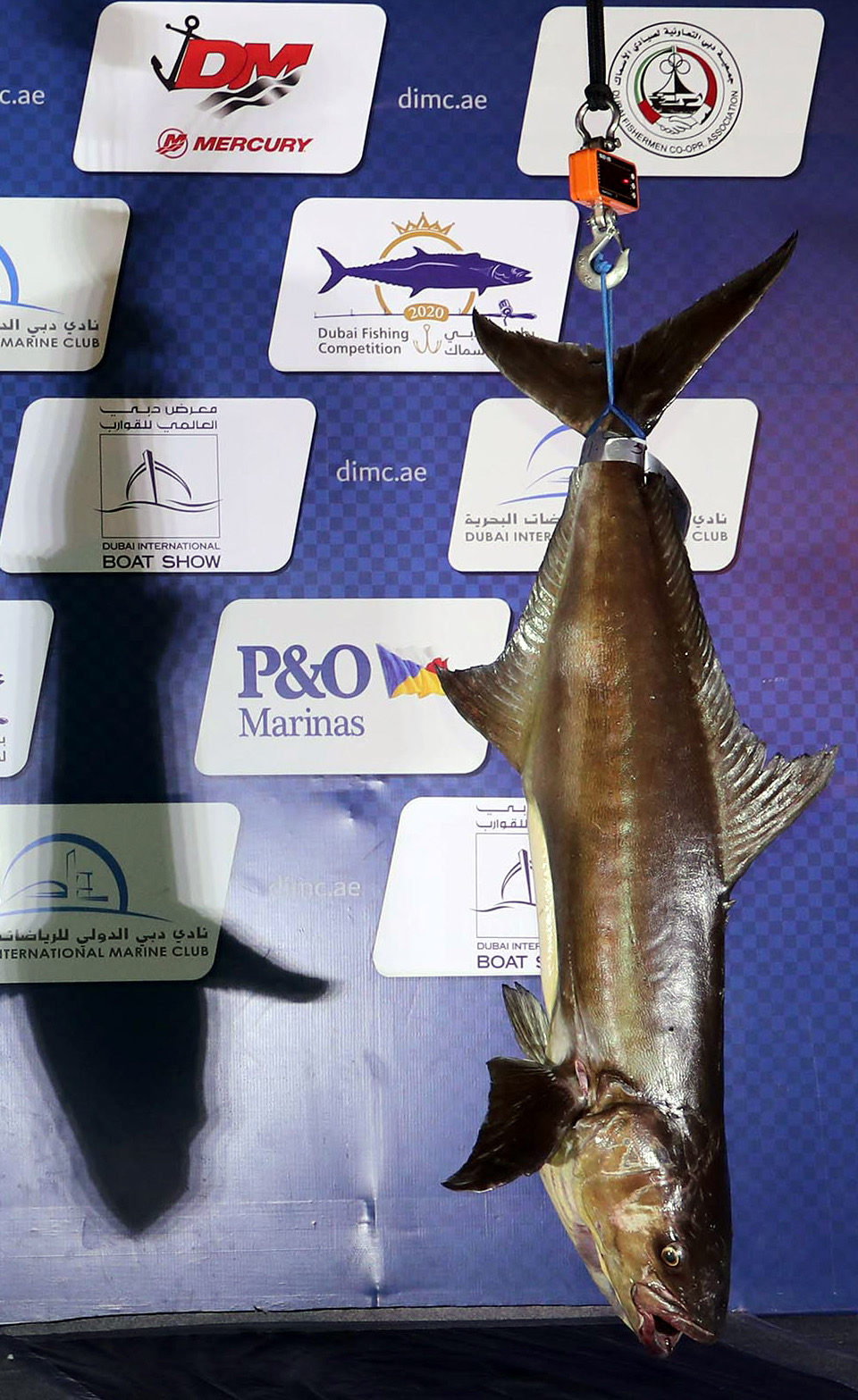 Blazing Competition at Dubai Fishing Competition