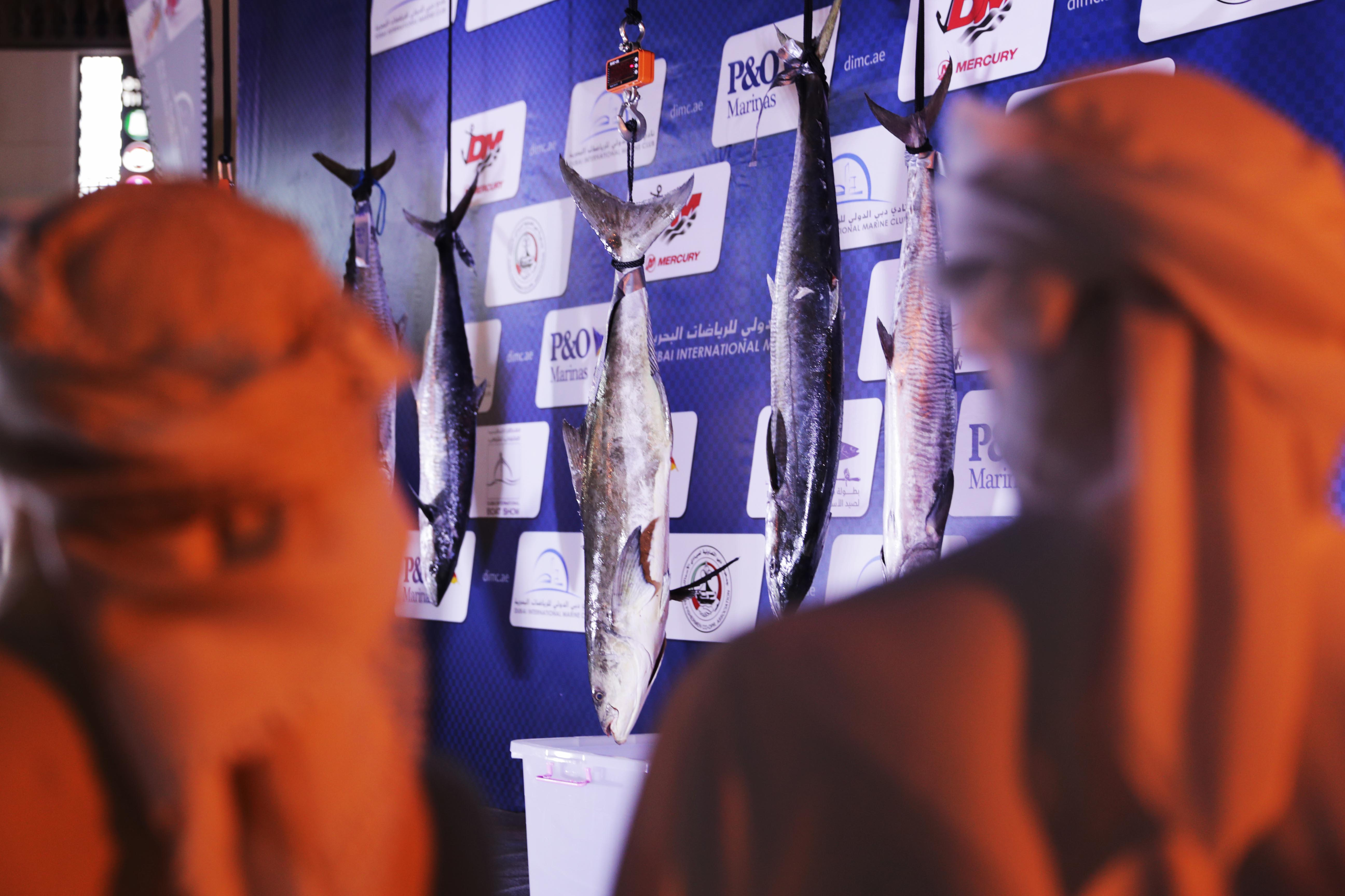 100 Participants for the Second Round of Dubai Fishing Competition